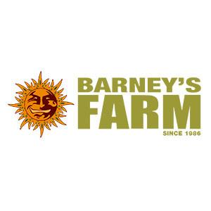 Barneys_farm_1