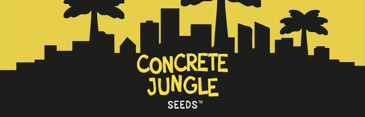 Concrete Jungle Seeds