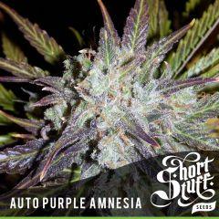 Short Stuff- Auto Purple Amnesia (5 Fem)