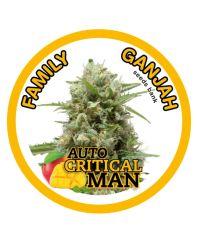 Family Ganjah Seeds - Auto Critical Man (Fem)