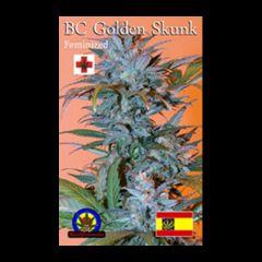 Next Generation - BC Golden Skunk feminized cannabis seeds - indica/sativa hybrid marijuana strain with a grow time around 60 days