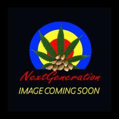 Next Generation - Purple Lightning regular cannabis seeds - indica/sativa hybrid marijuana strain with a medium yield