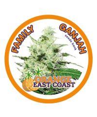 Family Ganjah - Orange East Coast (Fem)