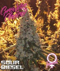 Growers Choice - Sour Diesel (Feminized)