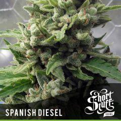 Short Stuff - Auto Spanish Diesel (5 Fem)